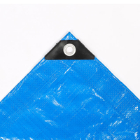Top Sale Covers Waterproof Canvas Pe Tarpaulin For Goods Protection